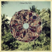 Compilation: Citrus City, Vol. 1